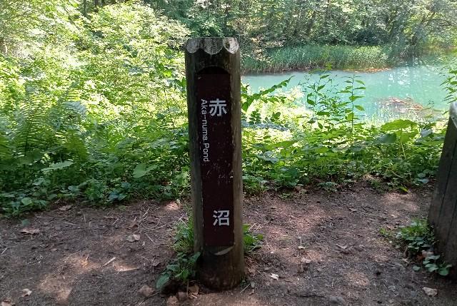 f:id:mura306:20210812204044j:image