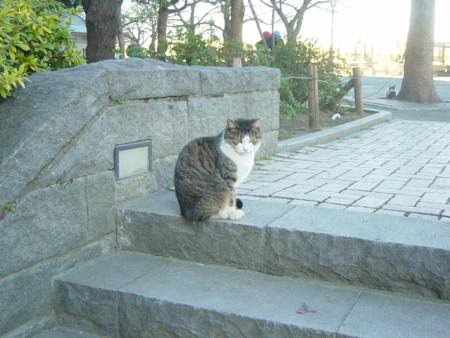 f:id:muraatsushi:20081227153235j:image