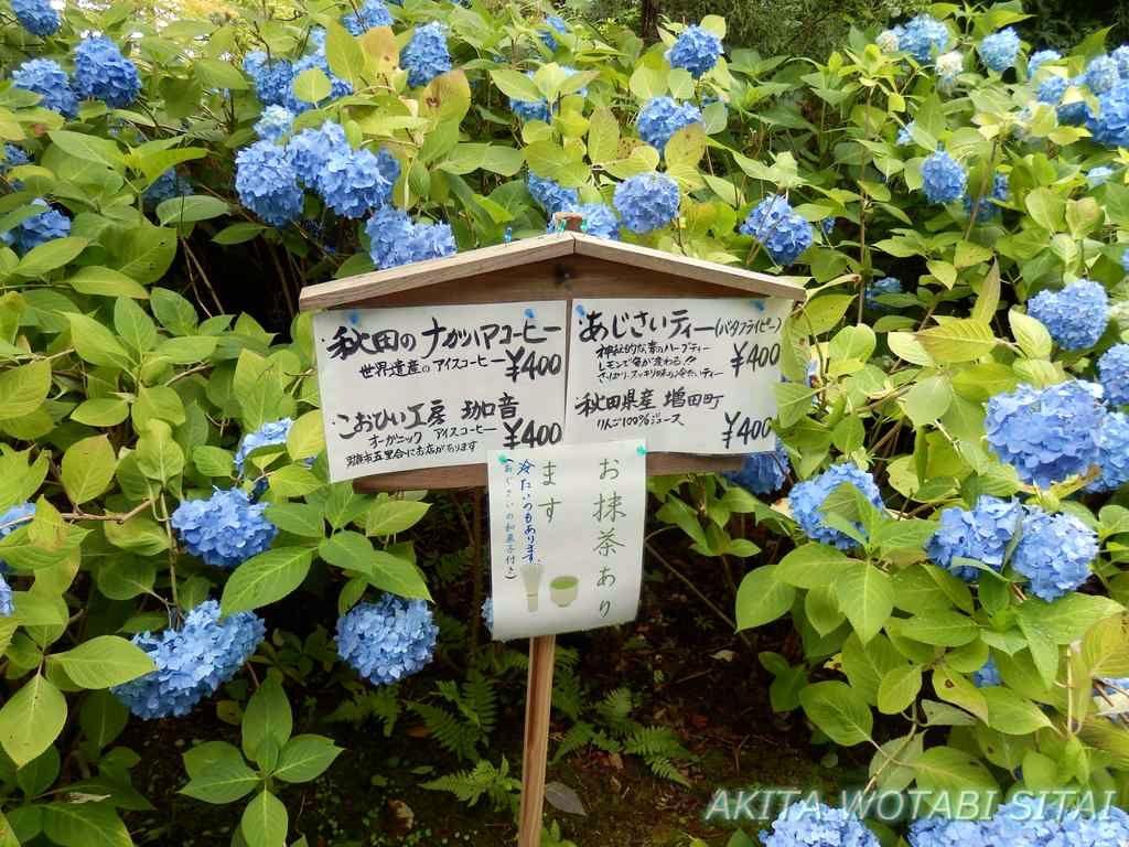 f:id:murabitosonoiti:20180803143605j:plain