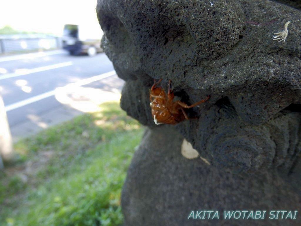f:id:murabitosonoiti:20180823113219j:plain