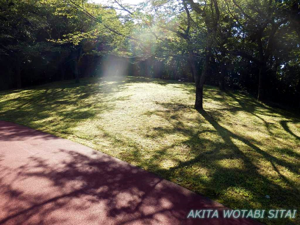 f:id:murabitosonoiti:20181016161136j:plain