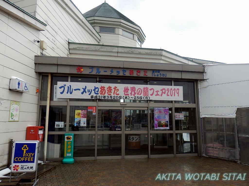 f:id:murabitosonoiti:20190315132414j:plain