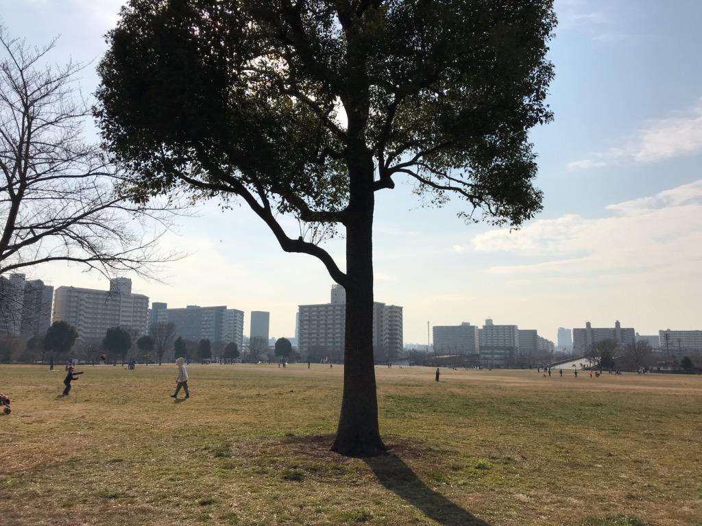 f:id:murakoshi5:20190408232207j:plain