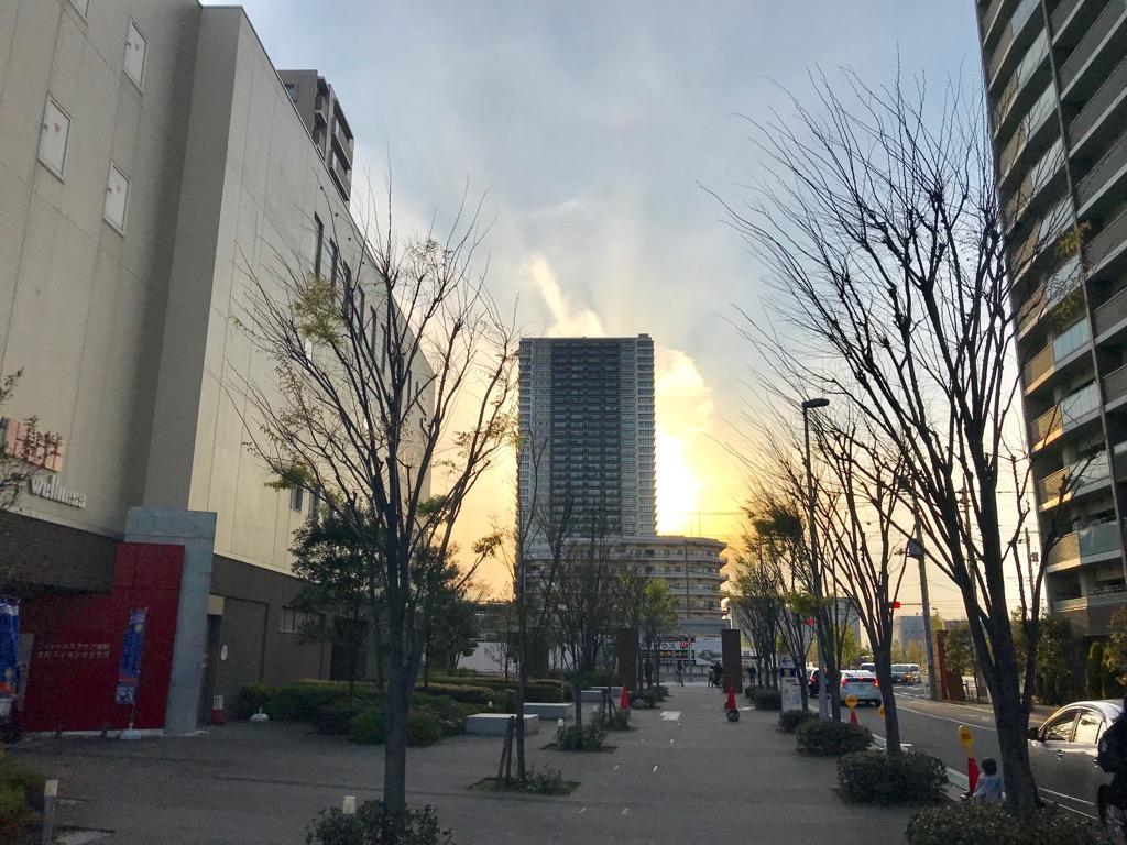 f:id:murakoshi5:20190423235926j:plain