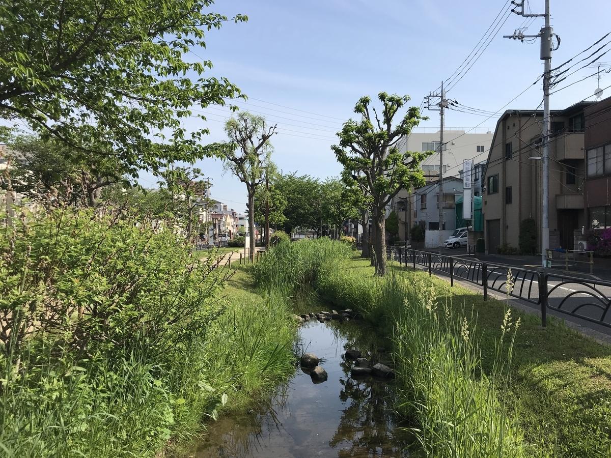 f:id:murakoshi5:20190511020541j:plain