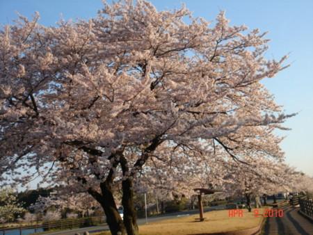 f:id:murakoujin:20100409051023j:image