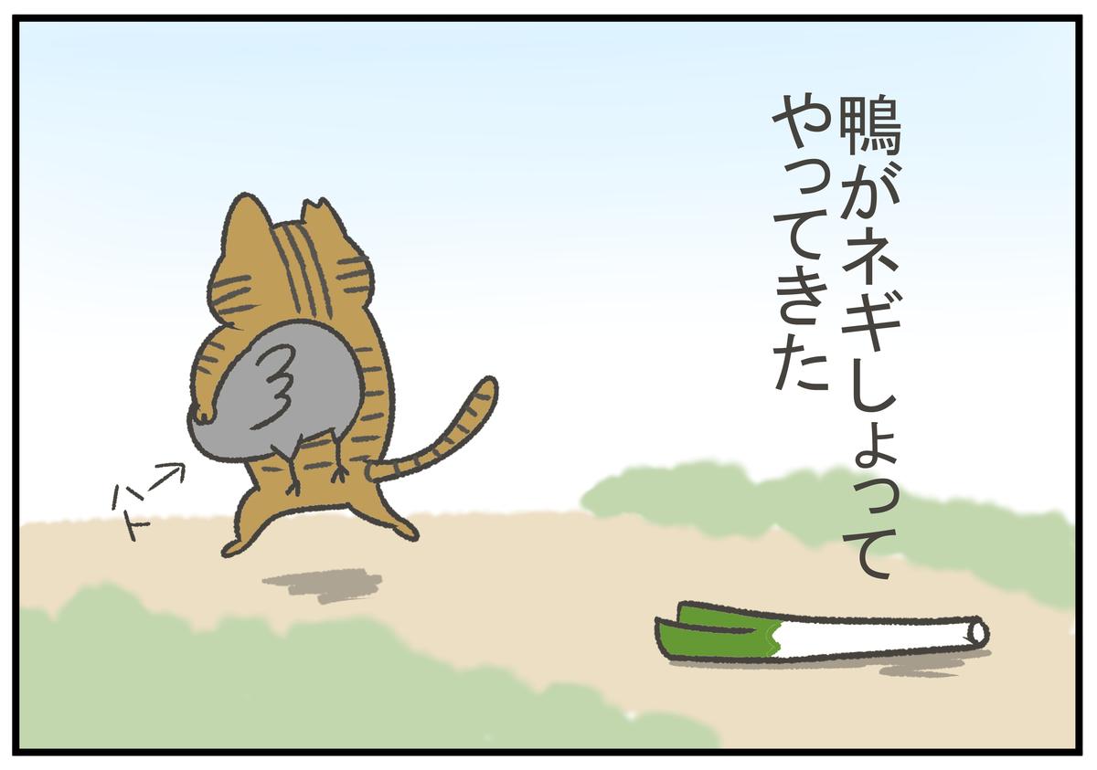 f:id:murakoyome:20200917203420j:plain