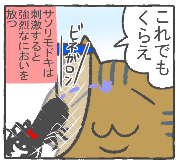 f:id:murakoyome:20201011194450j:plain