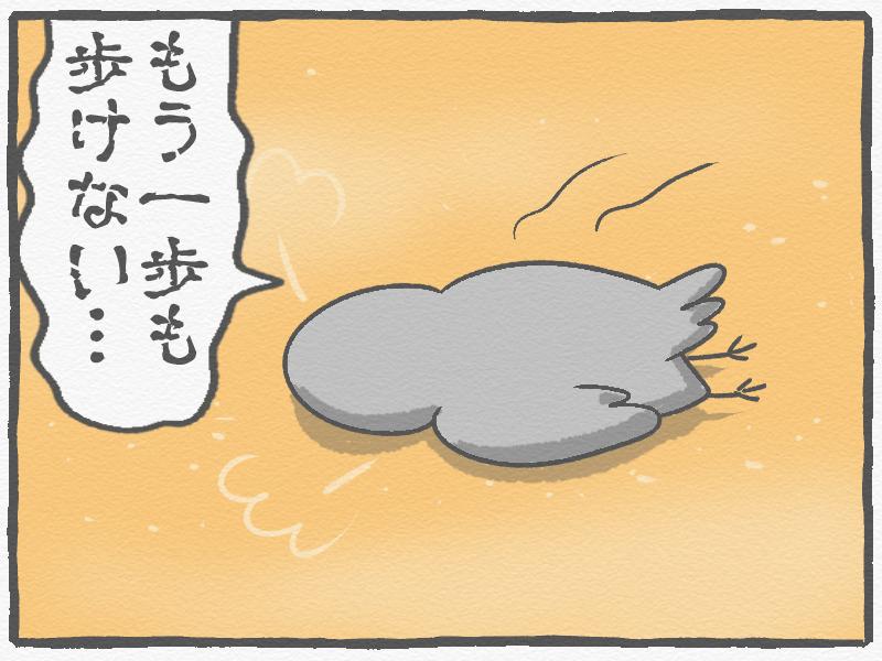 f:id:murakoyome:20201119213111j:plain