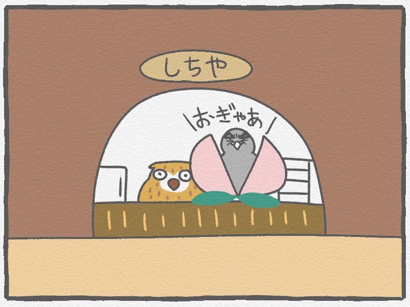 f:id:murakoyome:20210212220024j:plain