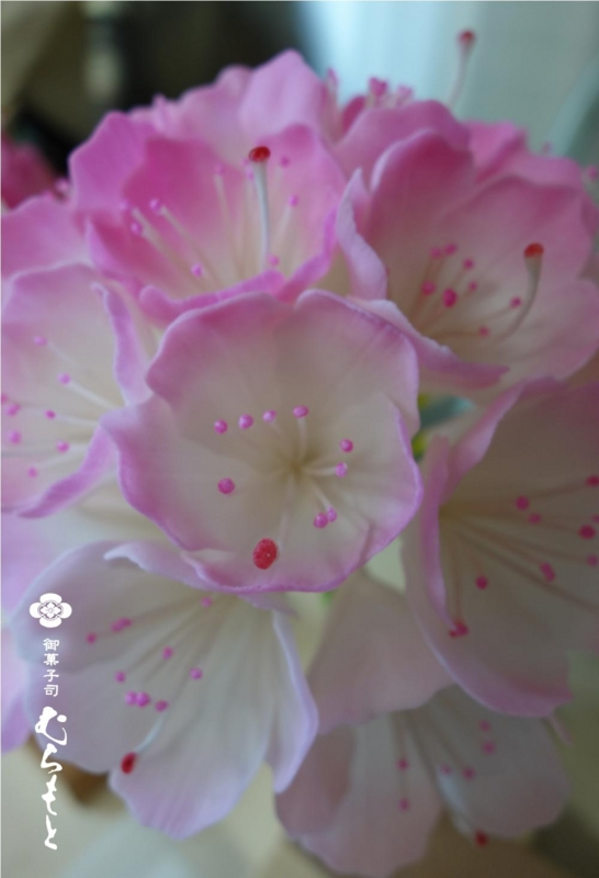 f:id:muramoto-wagashi:20130624195337j:image