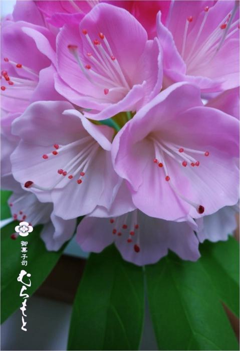 f:id:muramoto-wagashi:20130722195005j:image