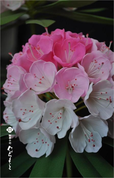 f:id:muramoto-wagashi:20130820175751j:image