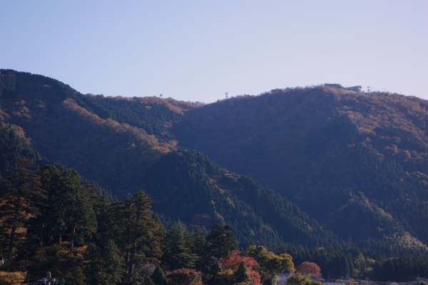 f:id:muramoto-wagashi:20131114091318j:image