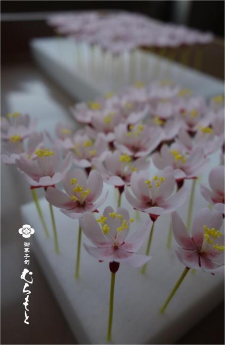 f:id:muramoto-wagashi:20140620202359j:image