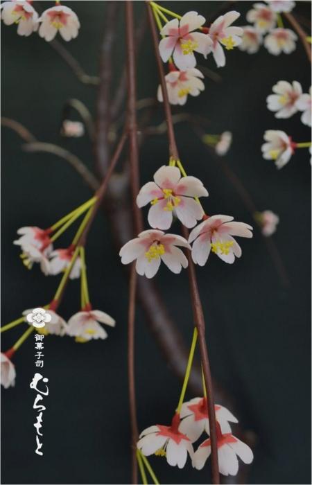 f:id:muramoto-wagashi:20140821190705j:image