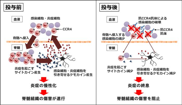 f:id:muramoto1041:20190313180455p:plain