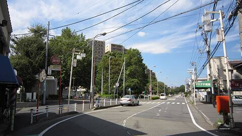 f:id:murasake11:20170615143751j:plain