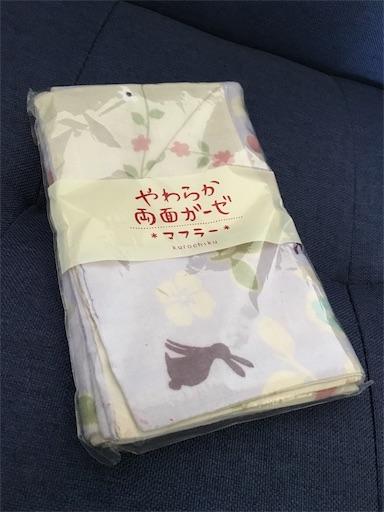 f:id:murasakiimokyabetu:20190722124243j:image