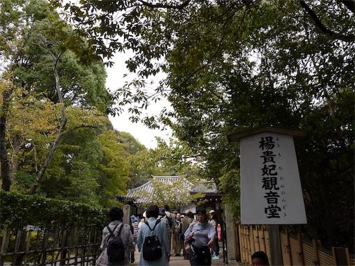 f:id:murasakiimokyabetu:20191023132210j:image