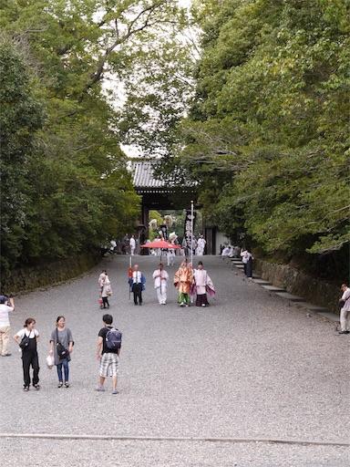 f:id:murasakiimokyabetu:20191023132221j:image