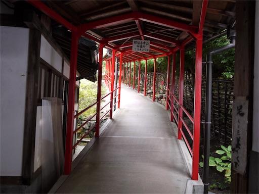 f:id:murasakiimokyabetu:20191023161211j:image