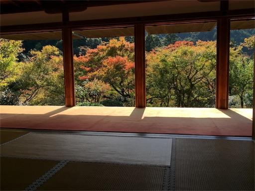 f:id:murasakiimokyabetu:20191111210210j:image