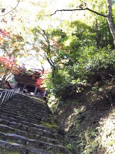 f:id:murasakiimokyabetu:20191111210214j:image