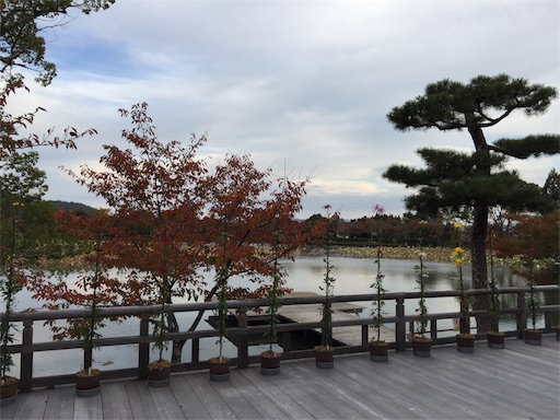 f:id:murasakiimokyabetu:20191111210221j:image