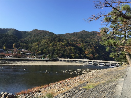 f:id:murasakiimokyabetu:20191111210225j:image