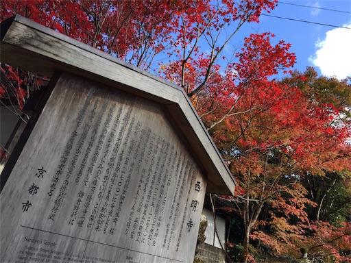 f:id:murasakiimokyabetu:20191111210235j:image