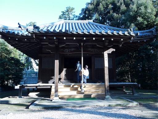 f:id:murasakiimokyabetu:20191202212251j:image