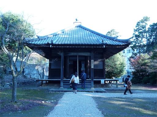 f:id:murasakiimokyabetu:20191202212255j:image