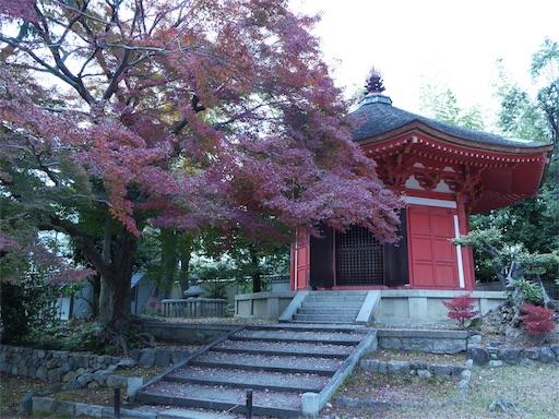f:id:murasakiimokyabetu:20191204223638j:image