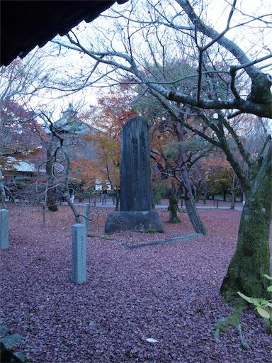 f:id:murasakiimokyabetu:20191204224500j:image