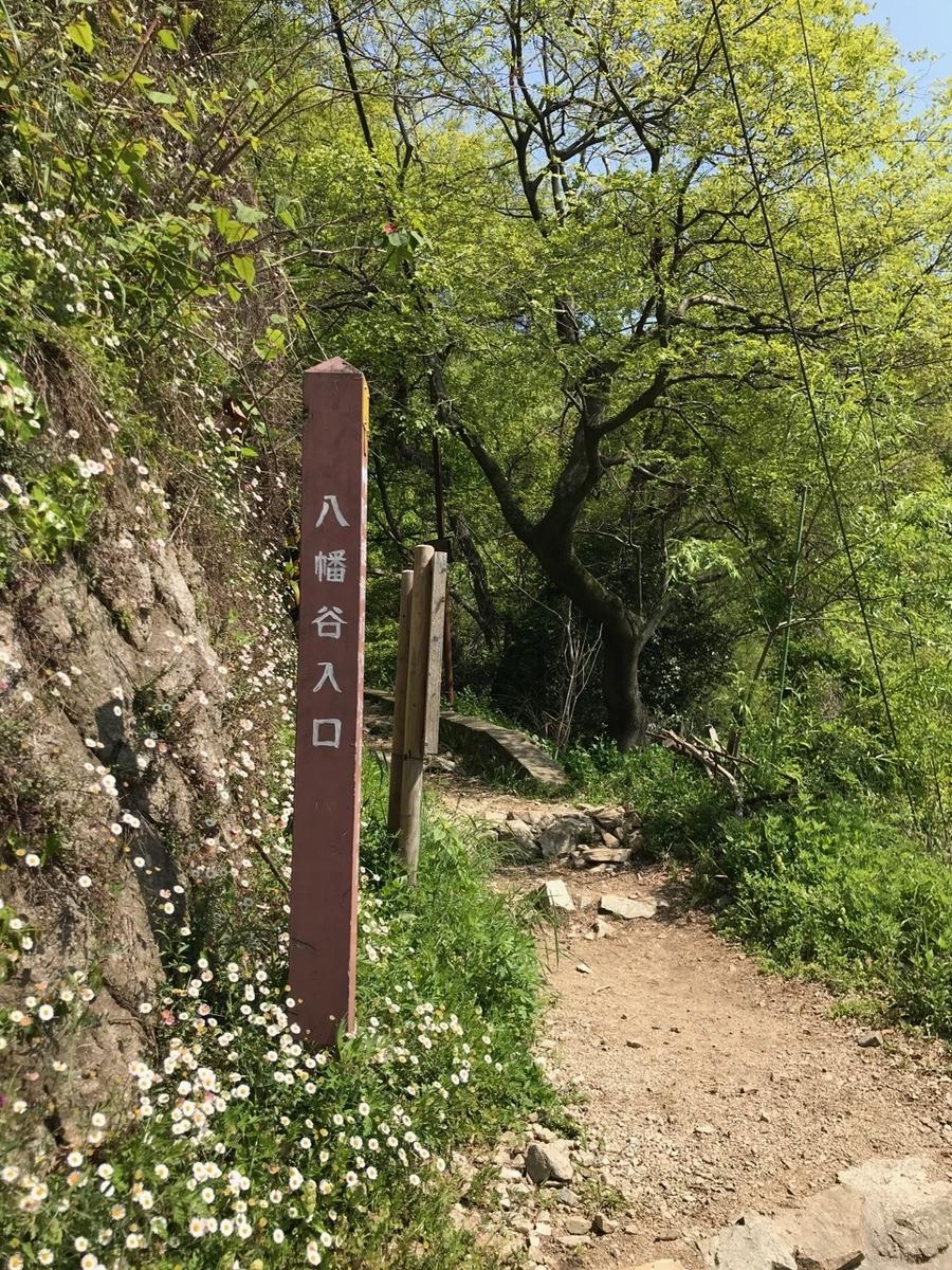 f:id:murasamenokiri:20210505162045j:plain