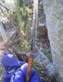 日本刀(本物)の虫干