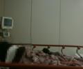 救急治療室にて