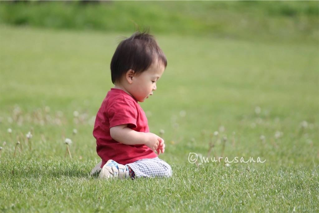 f:id:murasana:20170421135117j:image