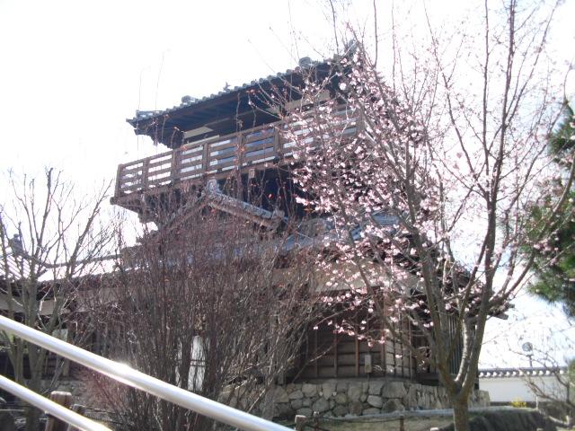 f:id:murashigea:20110323111442j:image