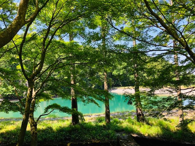 池 絶景 景色