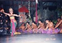 f:id:muratyan:20050813155111j:image