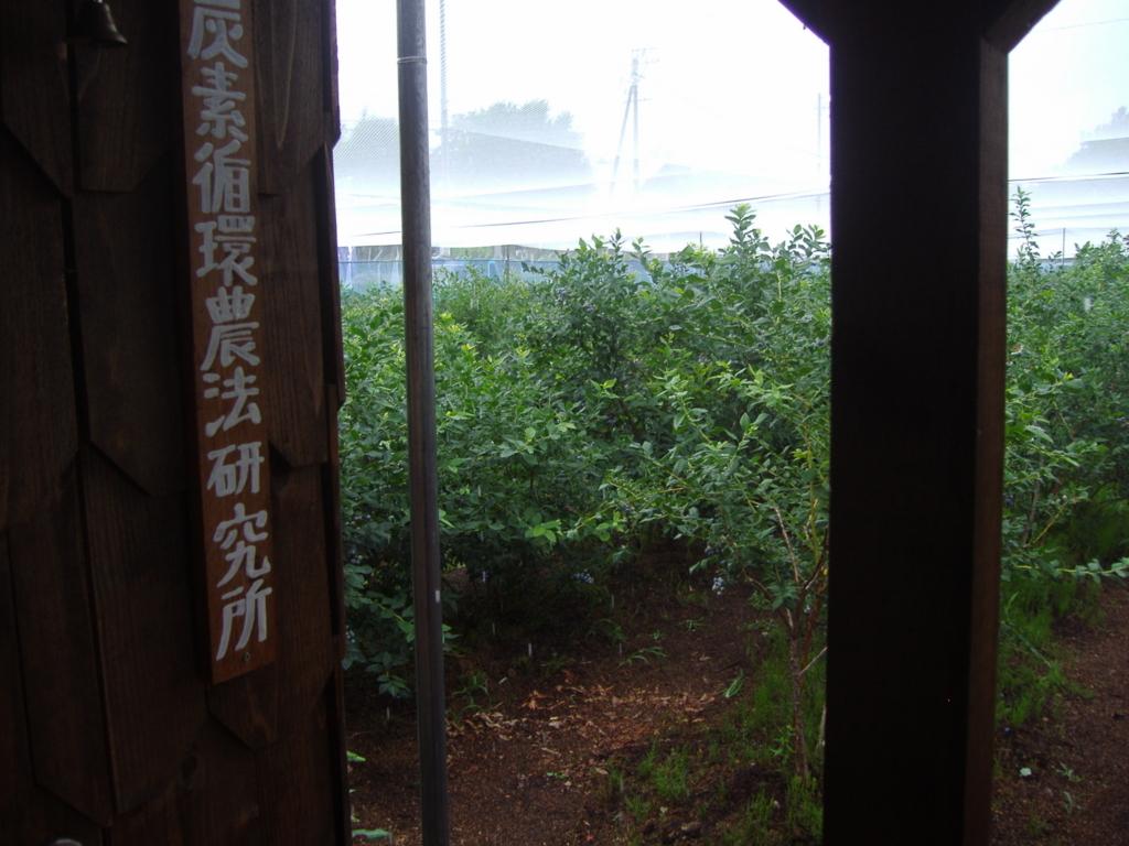 f:id:murayama147:20170711221927j:plain