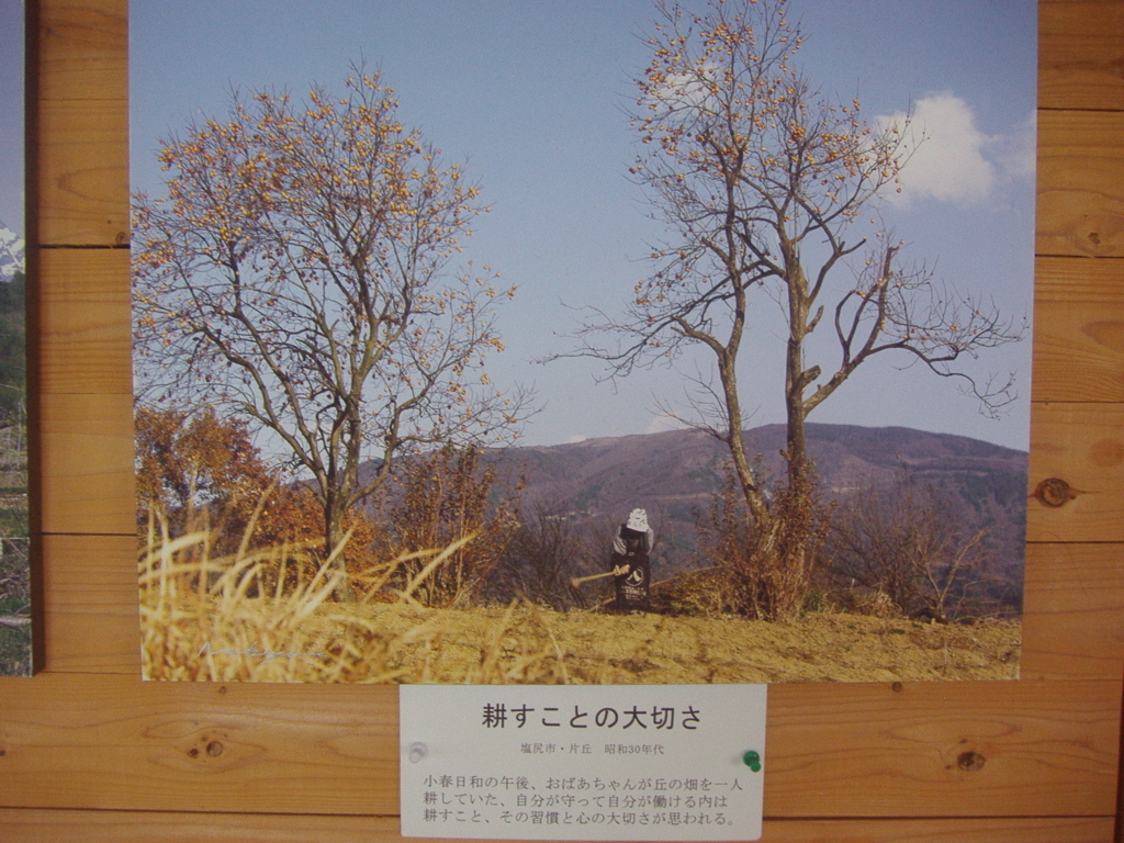 f:id:murayama147:20170725182654j:plain