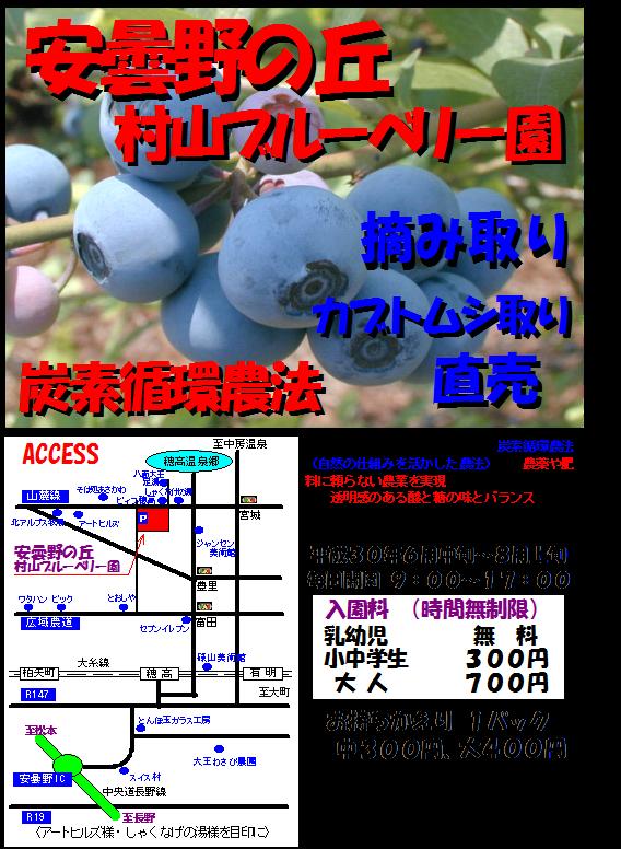 f:id:murayama147:20180619212455p:plain