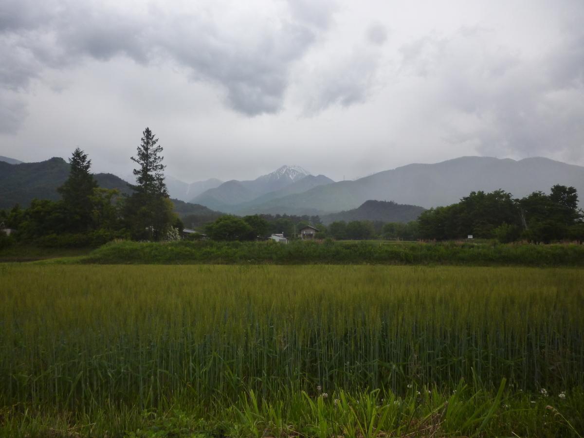 f:id:murayama147:20200526174739j:plain