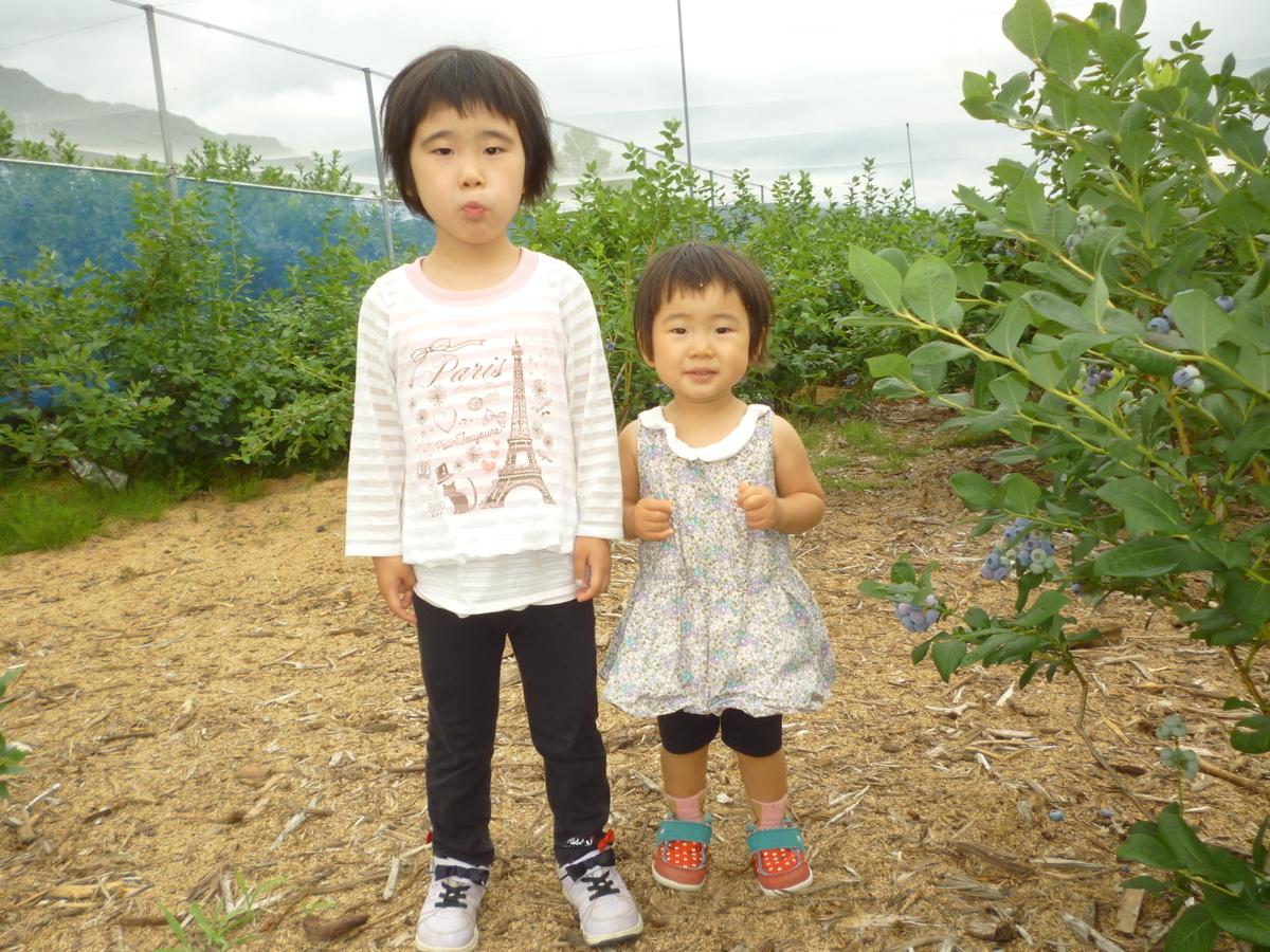 f:id:murayama147:20200703180650j:plain
