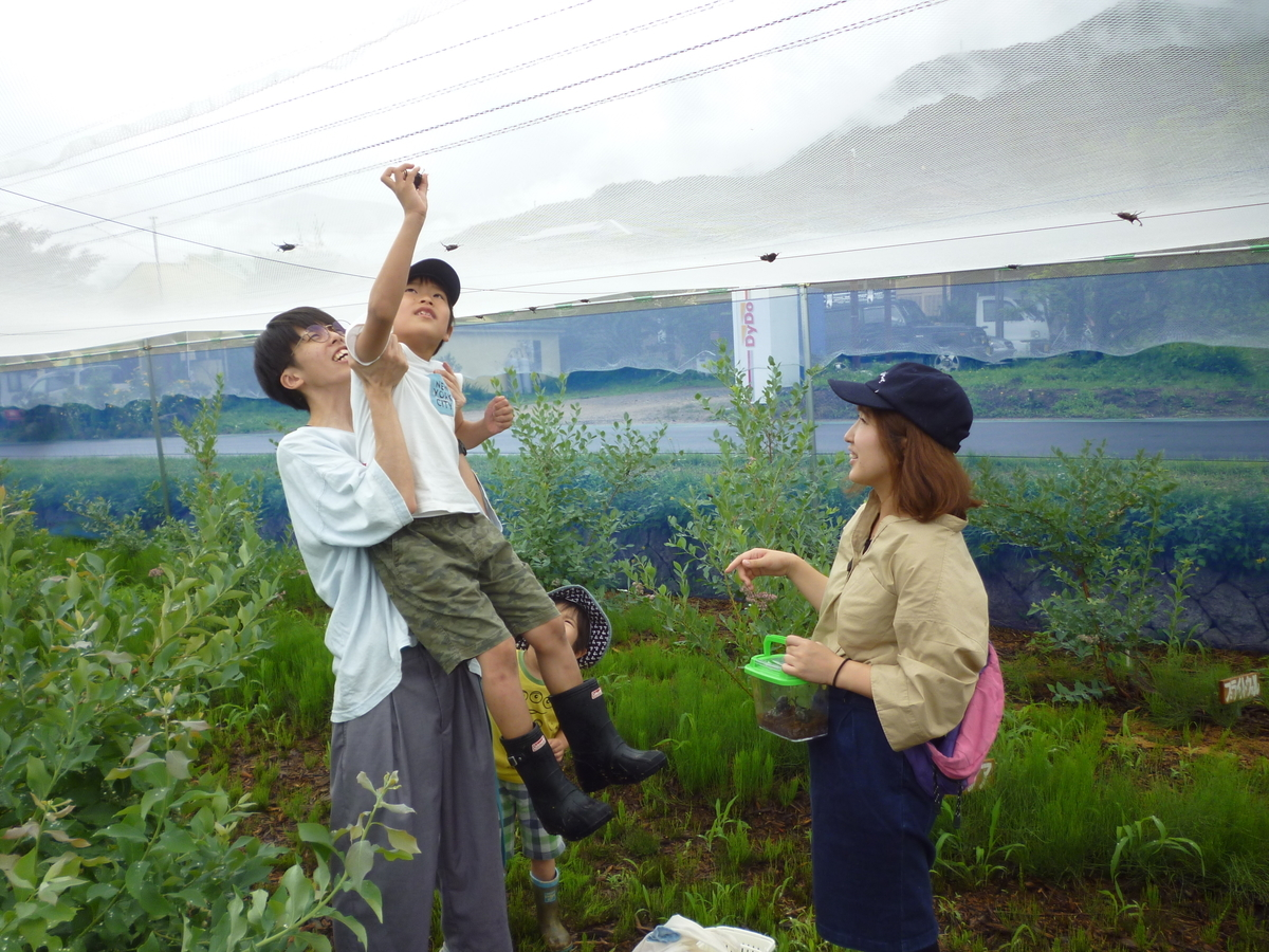 f:id:murayama147:20200711213111j:plain