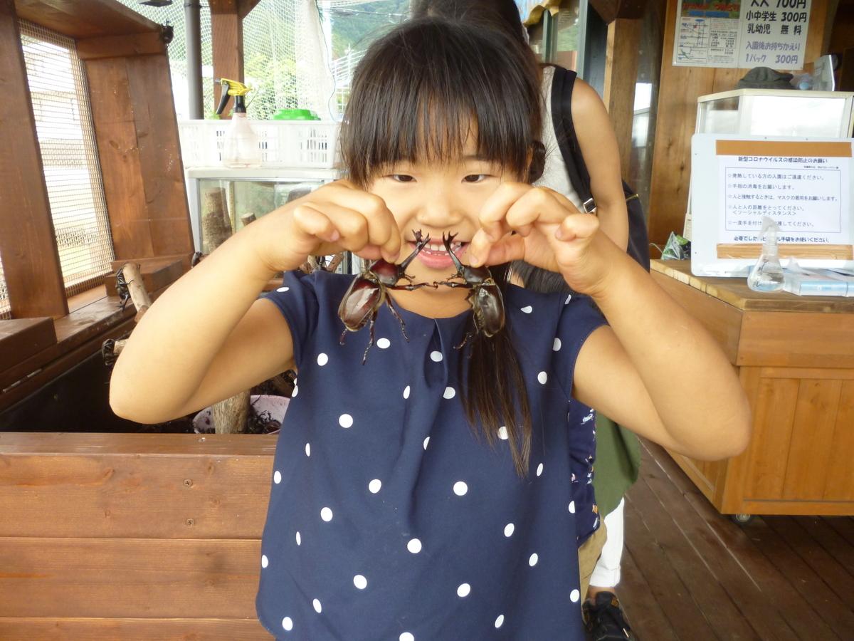 f:id:murayama147:20200712202502j:plain
