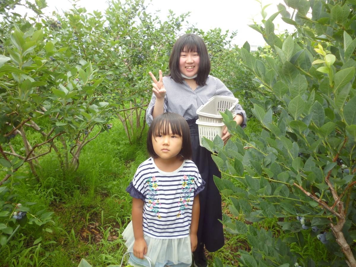 f:id:murayama147:20200714192626j:plain